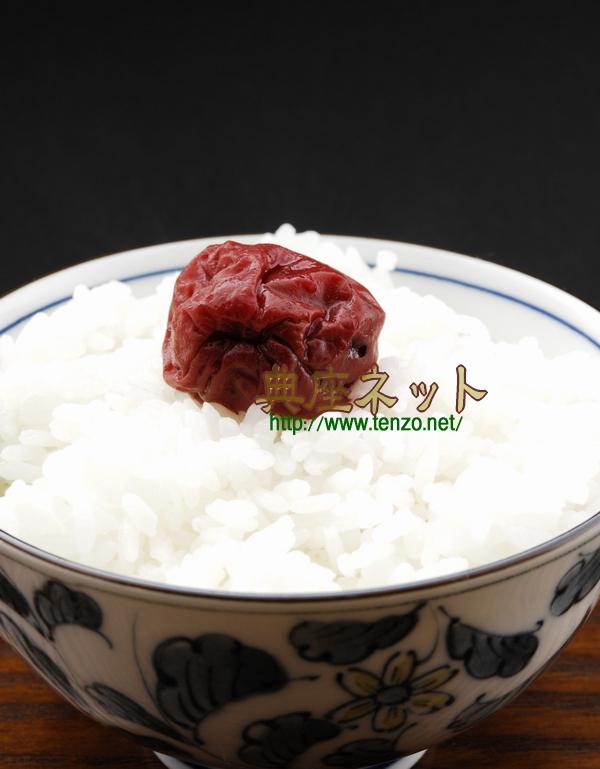 梅干しと白いご飯