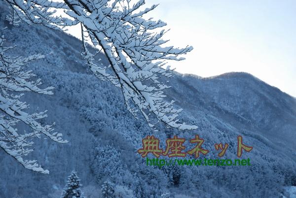 今日の大雪2